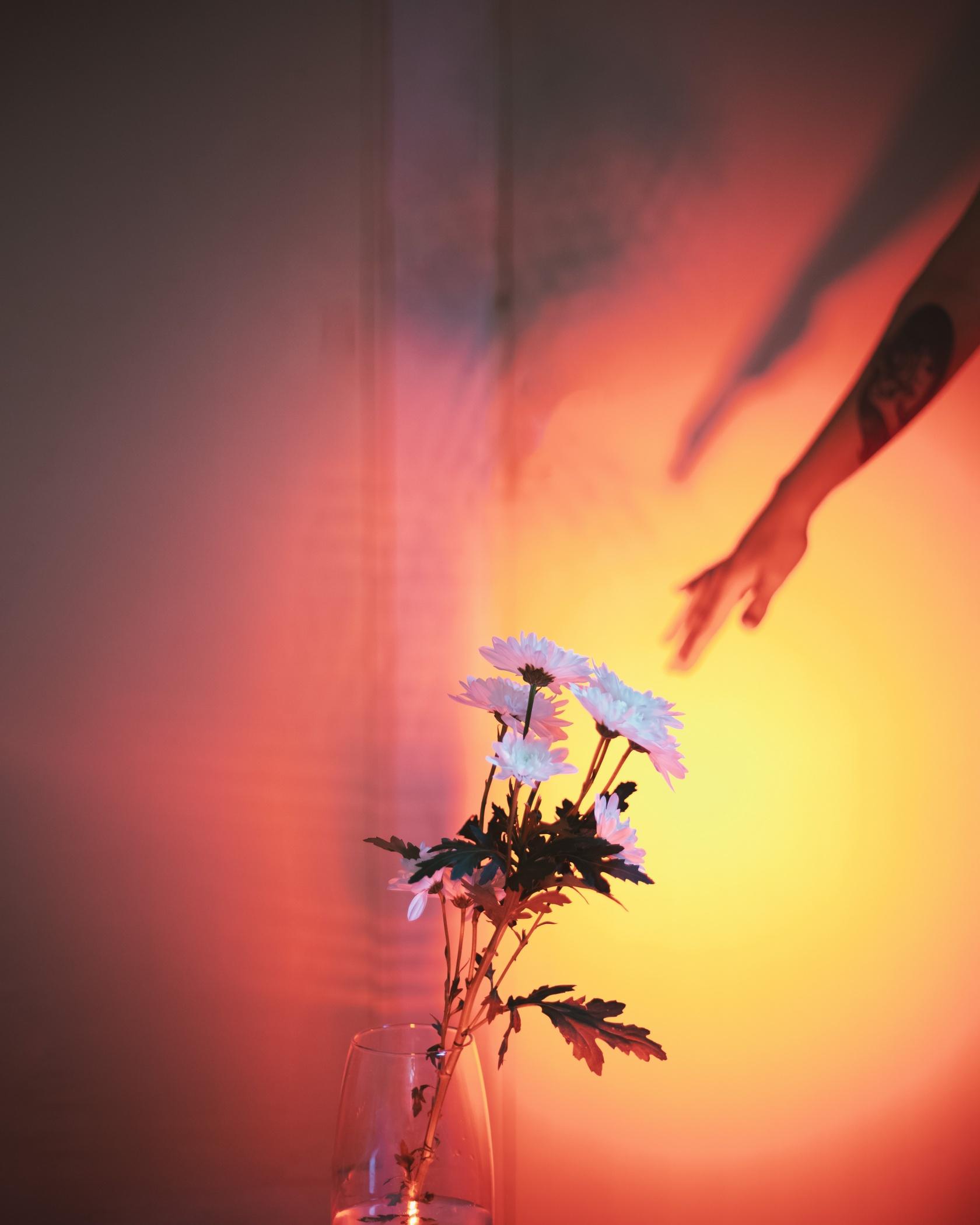 Selfportrait - Victoria Ocampo