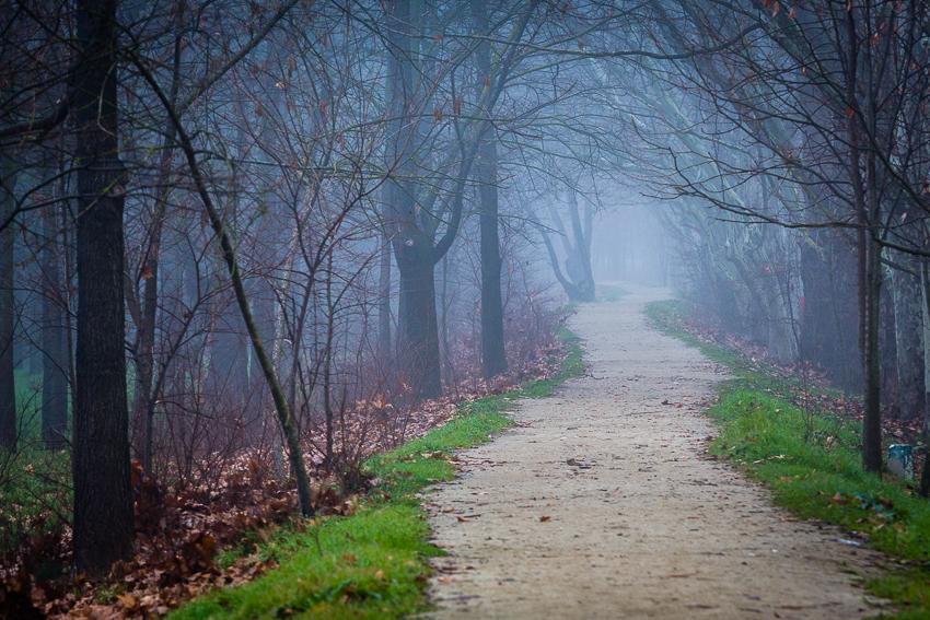 Viajes y paisajes - VictorJV, Photoreporter