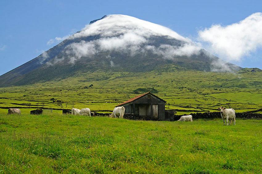 Volcán. Reserva Natural da Montanha do Pico - Islas Azores - Islas Azores - Roberto Bueno – Fotografía de Naturaleza