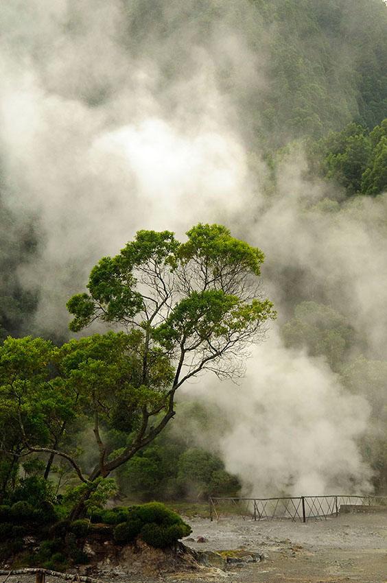 Fumarolas. Lagoa das Furnas. Isla de Sao Miguel - Islas Azores - Islas Azores - Roberto Bueno – Fotografía de Naturaleza