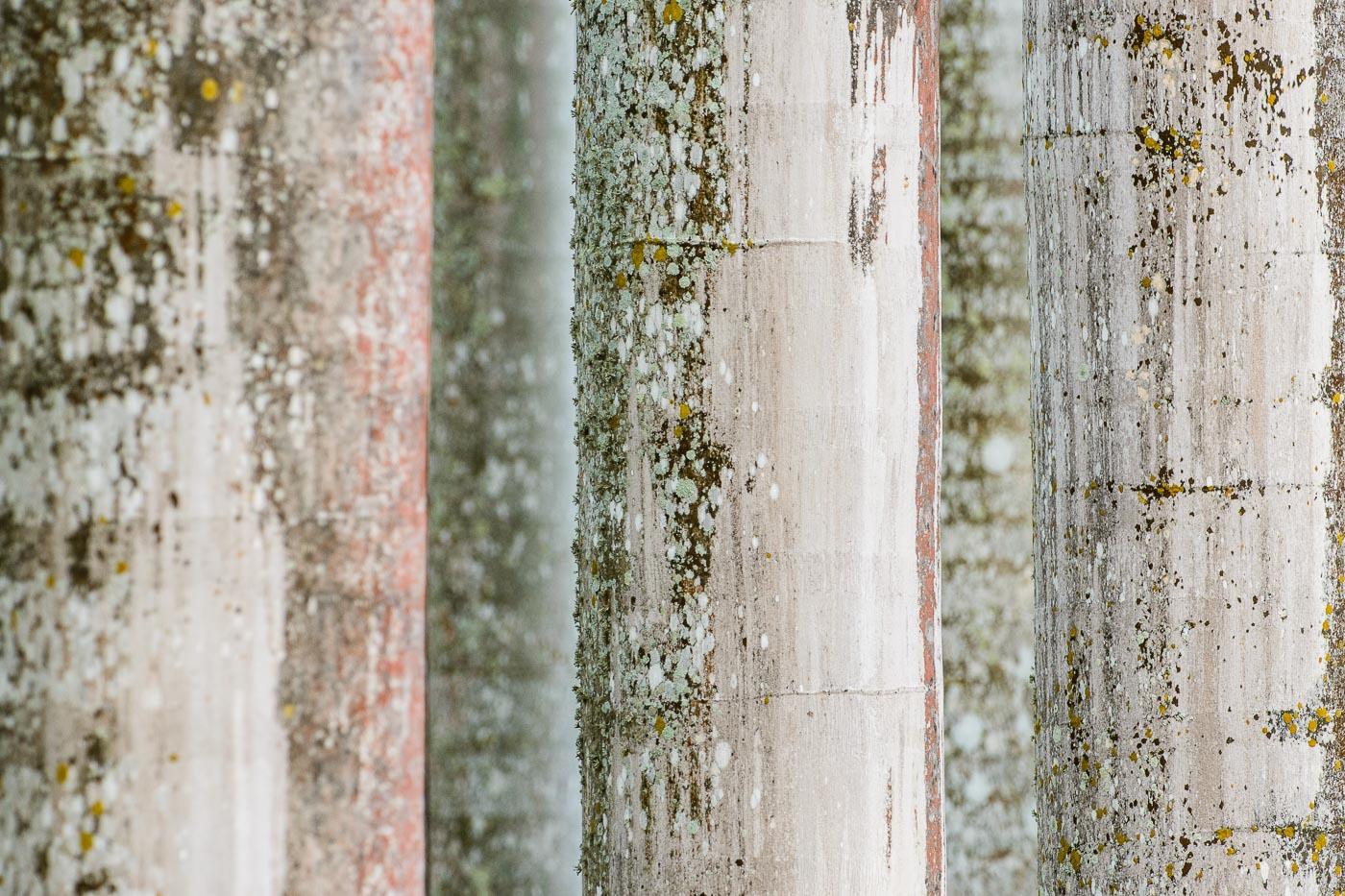 Jaula de madera - Con Otros Ojos - Con Otros Ojos - Roberto Bueno – Fotografía, Naturaleza, Abstracciones