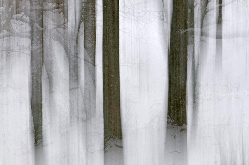 Mágico invierno - Con Otros Ojos - Con Otros Ojos - Roberto Bueno – Fotografía, Naturaleza, Abstracciones