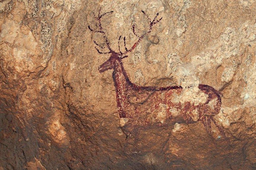Ciervo rupestre. Sierra de Guara - Huellas de historia - Fósiles, arqueología, historia - Roberto Bueno – Miliarios, museos, tumbas