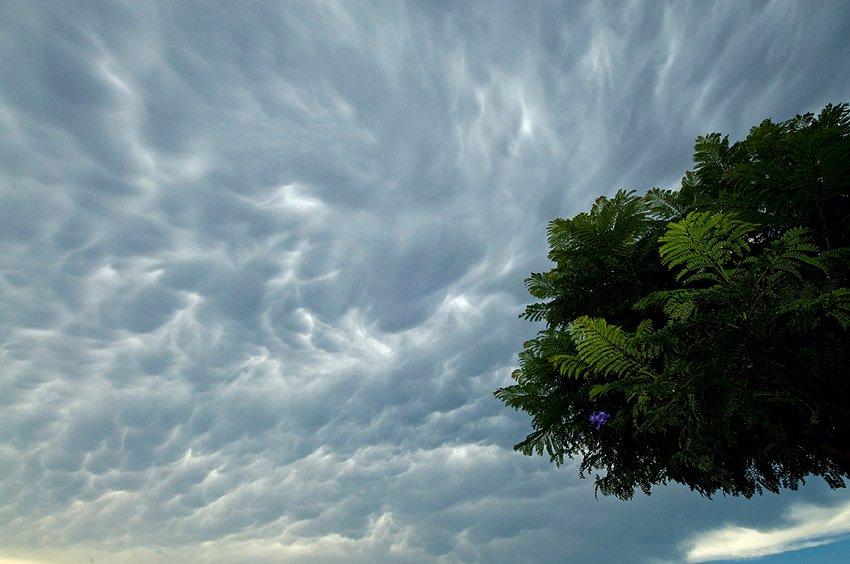 Cumulonimbus mamma  - Estar en las nubes - Nubes - Roberto Bueno – Meteorología, atmósfera