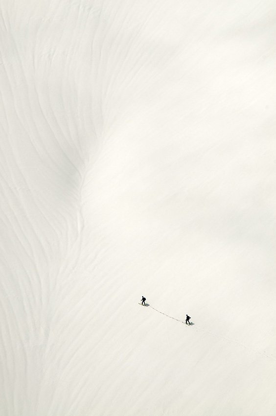 Negro sobre blanco - Blanco y Negro - Blanco y Negro - Roberto Bueno - Fotografía de Naturaleza
