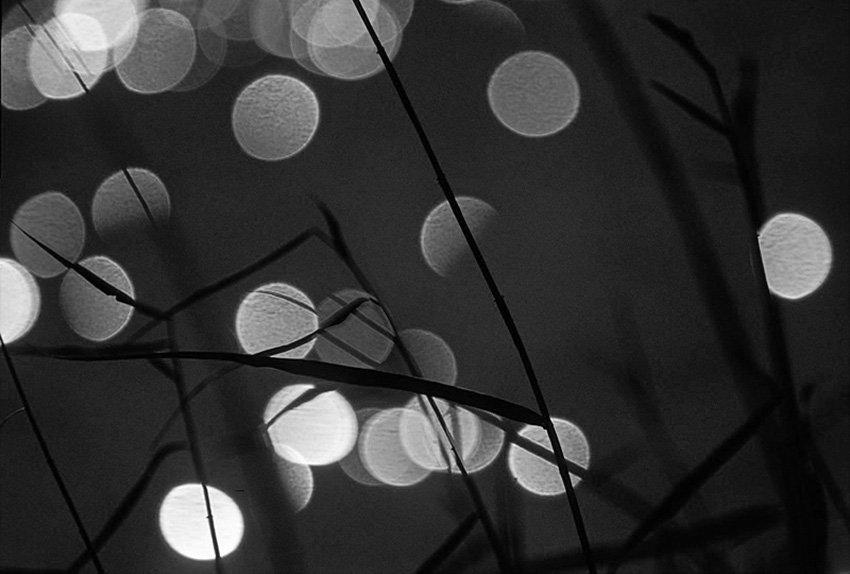 Mil reflejos del Sol - Blanco y Negro - Blanco y Negro - Roberto Bueno - Fotografía de Naturaleza