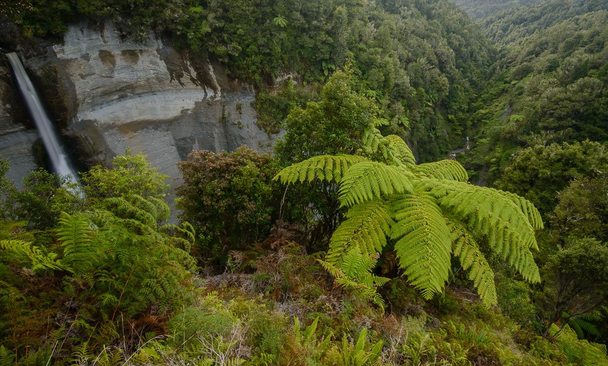 Mt Damper Fall, Ahititi, Taranaki - Nueva Zelanda - Nueva Zelanda, Isla Norte. Roberto Bueno; Fotografía de Naturaleza y Viajes