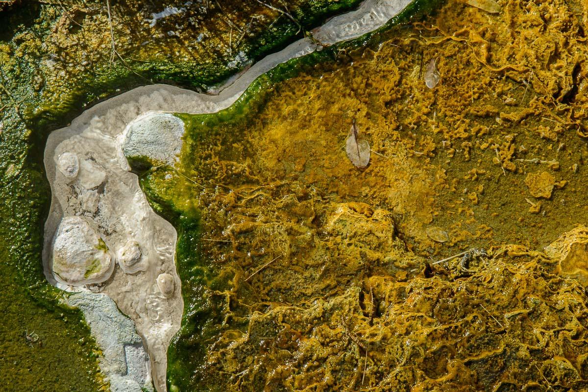 Depósitos termales, Valle volcánico de Waimangu - Nueva Zelanda - Nueva Zelanda, Isla Norte. Roberto Bueno; Fotografía de Naturaleza y Viajes