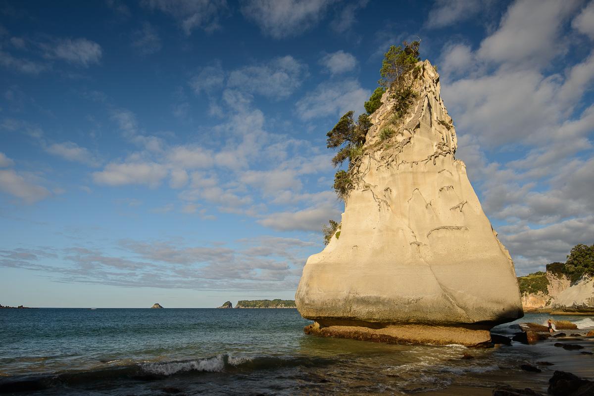Islote de arenisca, Cathedral Cove, Hahei, Waikato - Nueva Zelanda - Nueva Zelanda, Isla Norte. Roberto Bueno; Fotografía de Naturaleza y Viajes