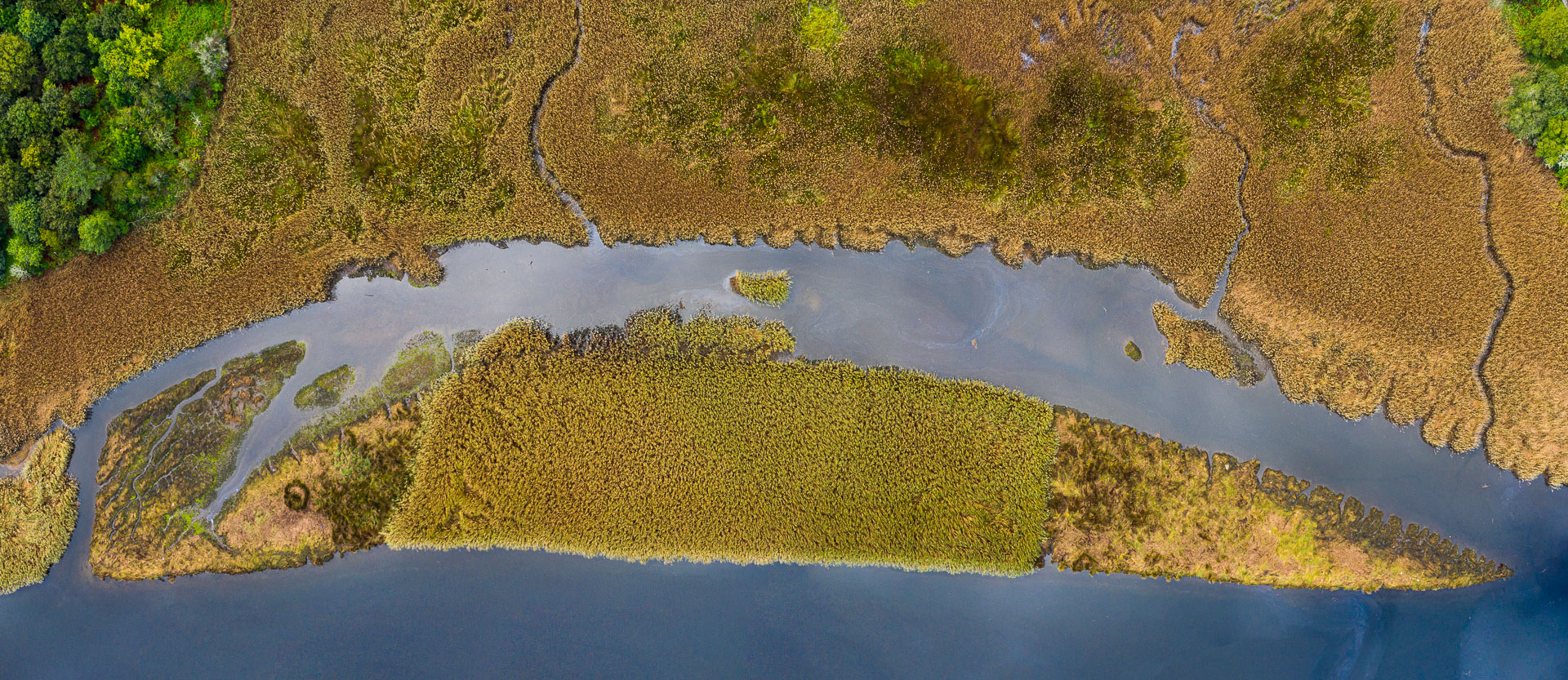 Como pez en el agua - Desde el aire 2 - Roberto Bueno - Fotografía de Naturaleza - Luces del Planeta - Desde el aire