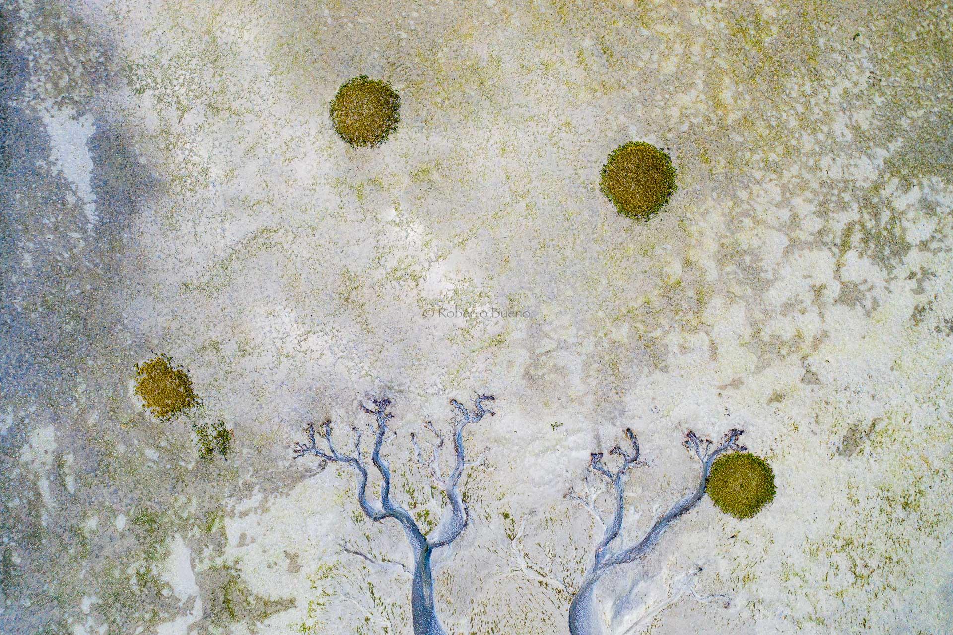 Abstracciones en la ría - Desde el aire 2 - Roberto Bueno - Fotografía de Naturaleza - Luces del Planeta - Desde el aire