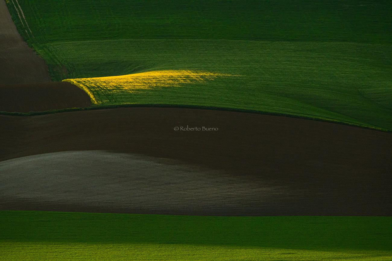 Campos de Andalucía - Luces del Planeta - Luces del Planeta - Roberto Bueno – Fotografía de Naturaleza