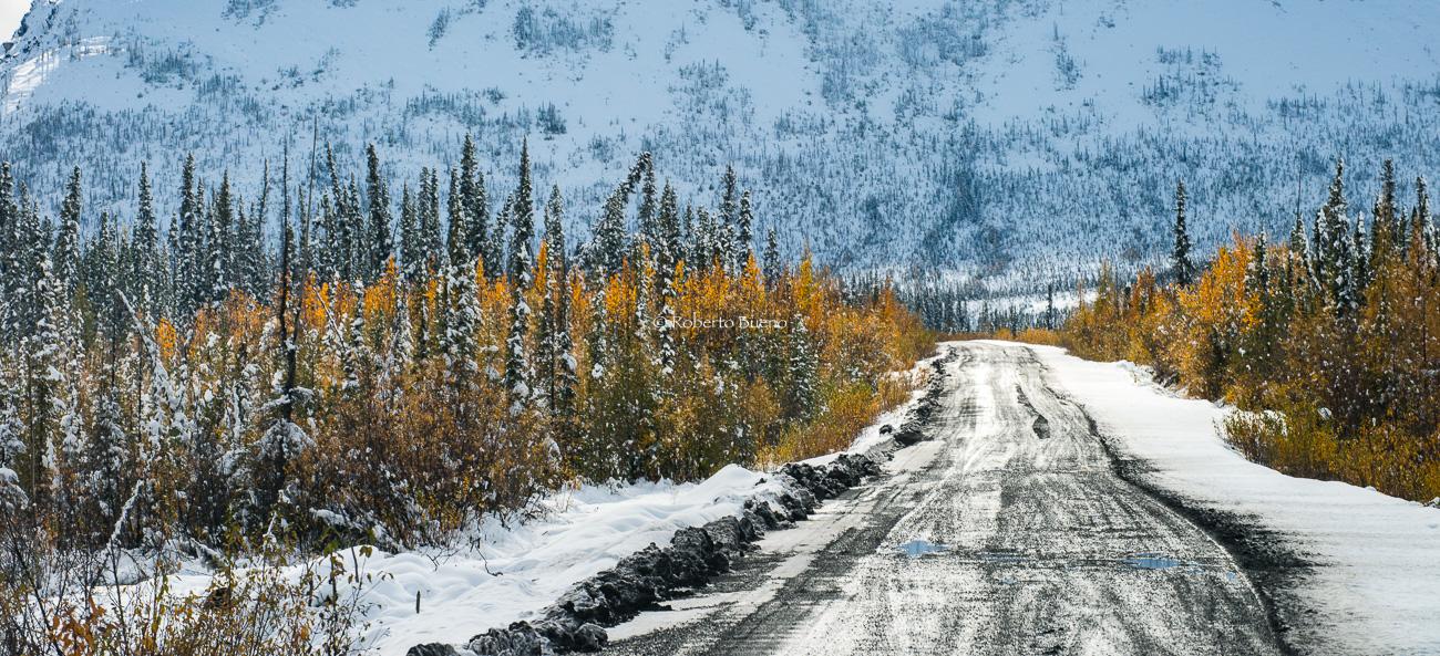 Dura y fría Dempster Highway - Yukon, NWT y Dempster - Roberto Bueno. Luces del Planeta. Fotografías. Yukon, Territorios del Noroeste y Dempster Highway
