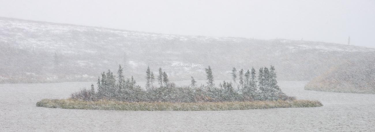 Tormenta de nieve en Midway Lake. Dempster Highway. Northwest Territories - Yukon, NWT y Dempster - Roberto Bueno. Luces del Planeta. Fotografías. Yukon, Territorios del Noroeste y Dempster Highway