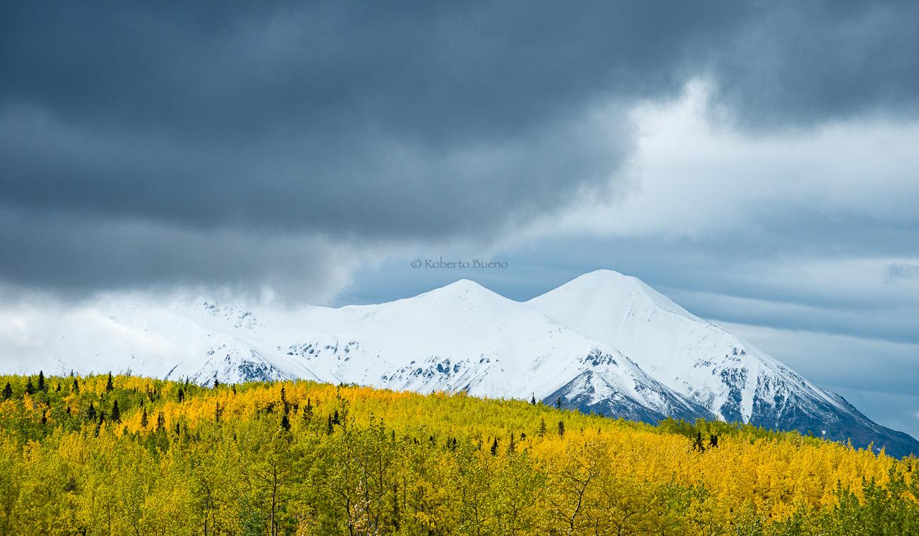 Otoño - invierno. Thakane River. Yukon - Yukon, NWT y Dempster - Roberto Bueno. Luces del Planeta. Fotografías. Yukon, Territorios del Noroeste y Dempster Highway