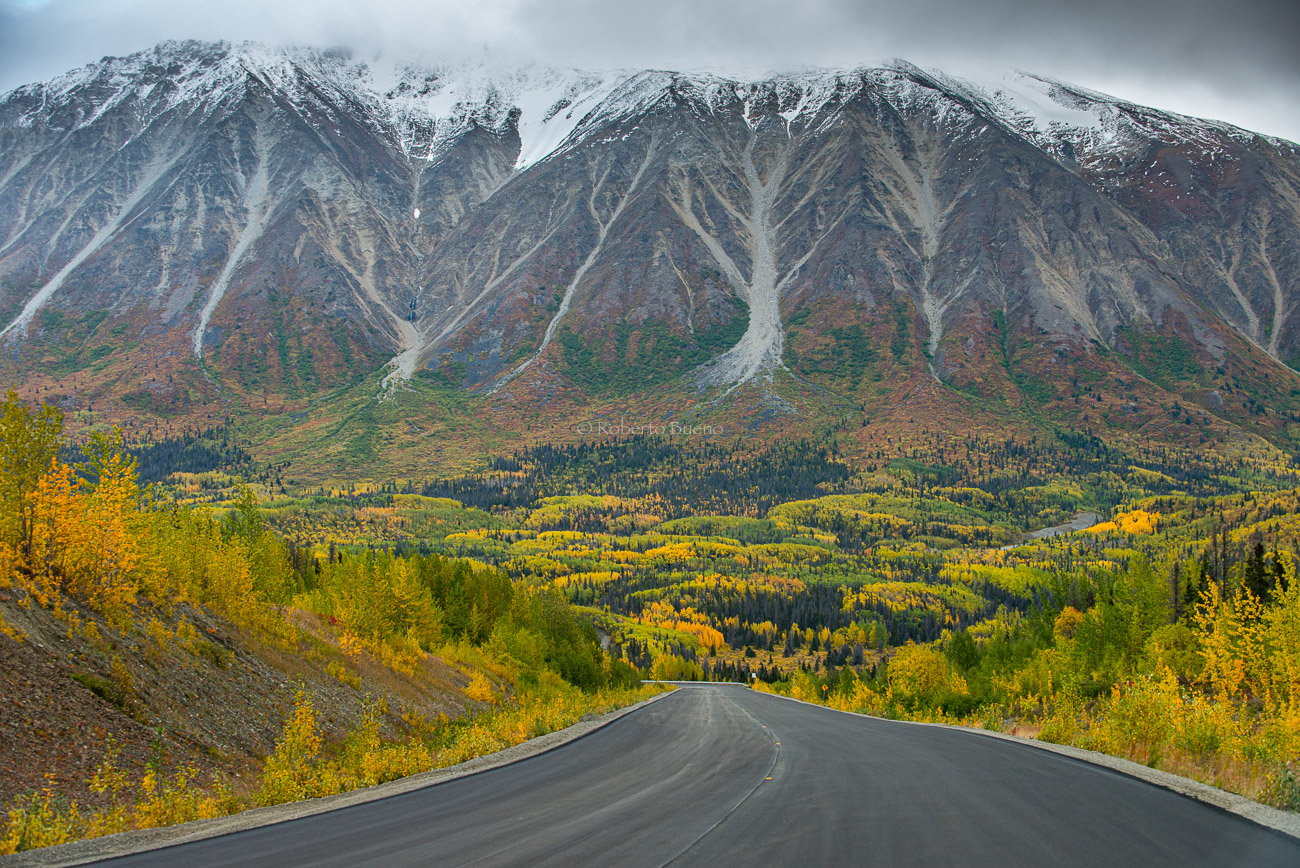 Haines Road. Yukon - Yukon, NWT y Dempster - Roberto Bueno. Luces del Planeta. Fotografías. Yukon, Territorios del Noroeste y Dempster Highway