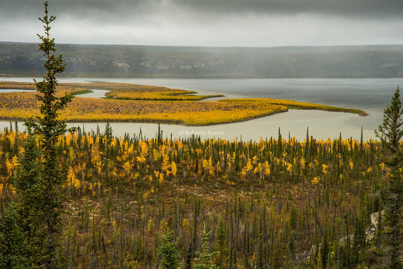 Lago Campbell, cerca de Inuvik. Delta del río Mackenzie. Territorios del Noroeste - Yukon, NWT y Dempster - Roberto Bueno. Luces del Planeta. Fotografías. Yukon, Territorios del Noroeste y Dempster Highway