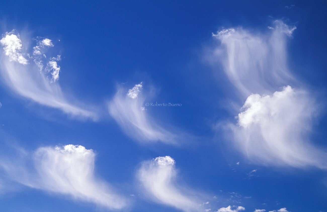 Cirrus uncinus - Estar en las nubes - Nubes - Roberto Bueno – Meteorología, atmósfera