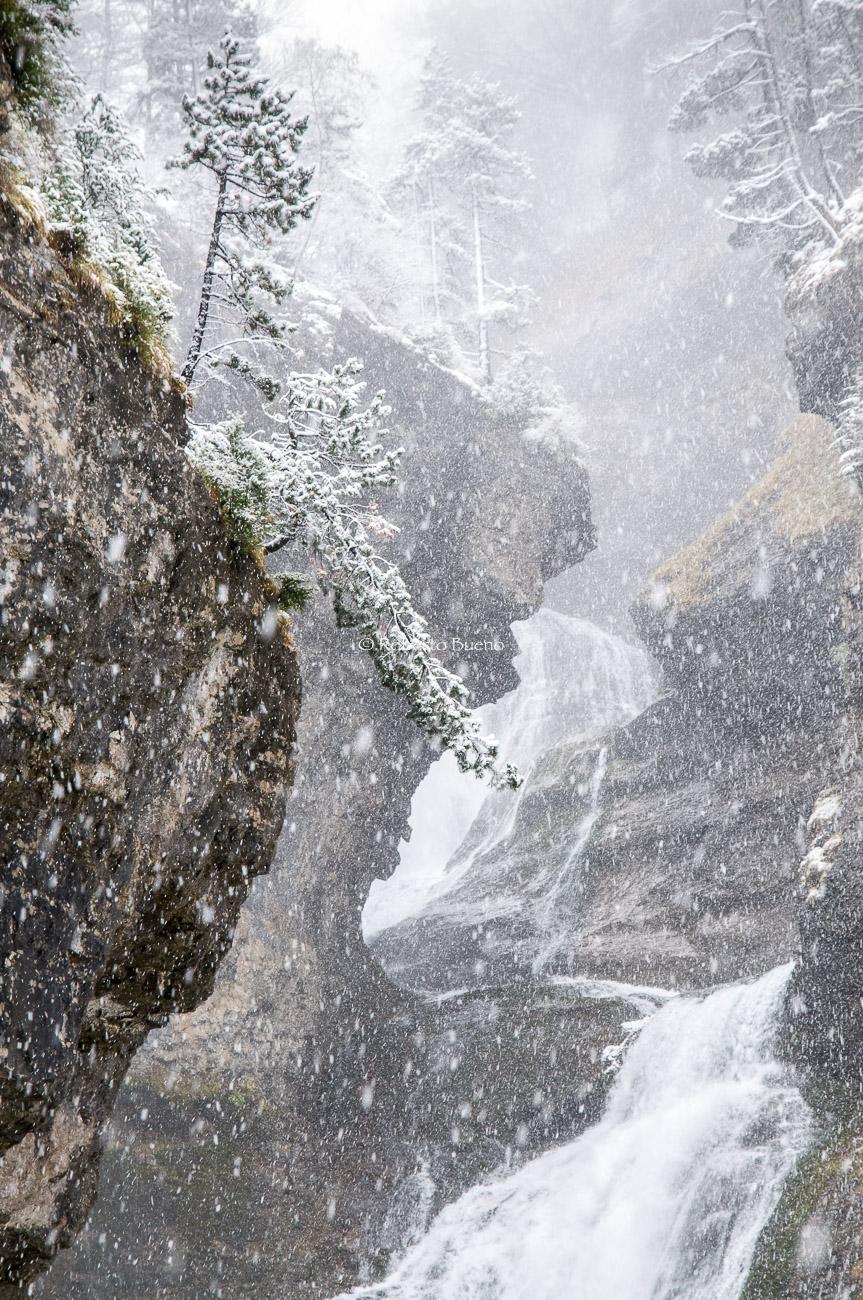 El silencio blanco. Cascada del Estrecho. Parque Nacional de Ordesa - Luces del Planeta - Luces del Planeta - Roberto Bueno – Fotografía de Naturaleza