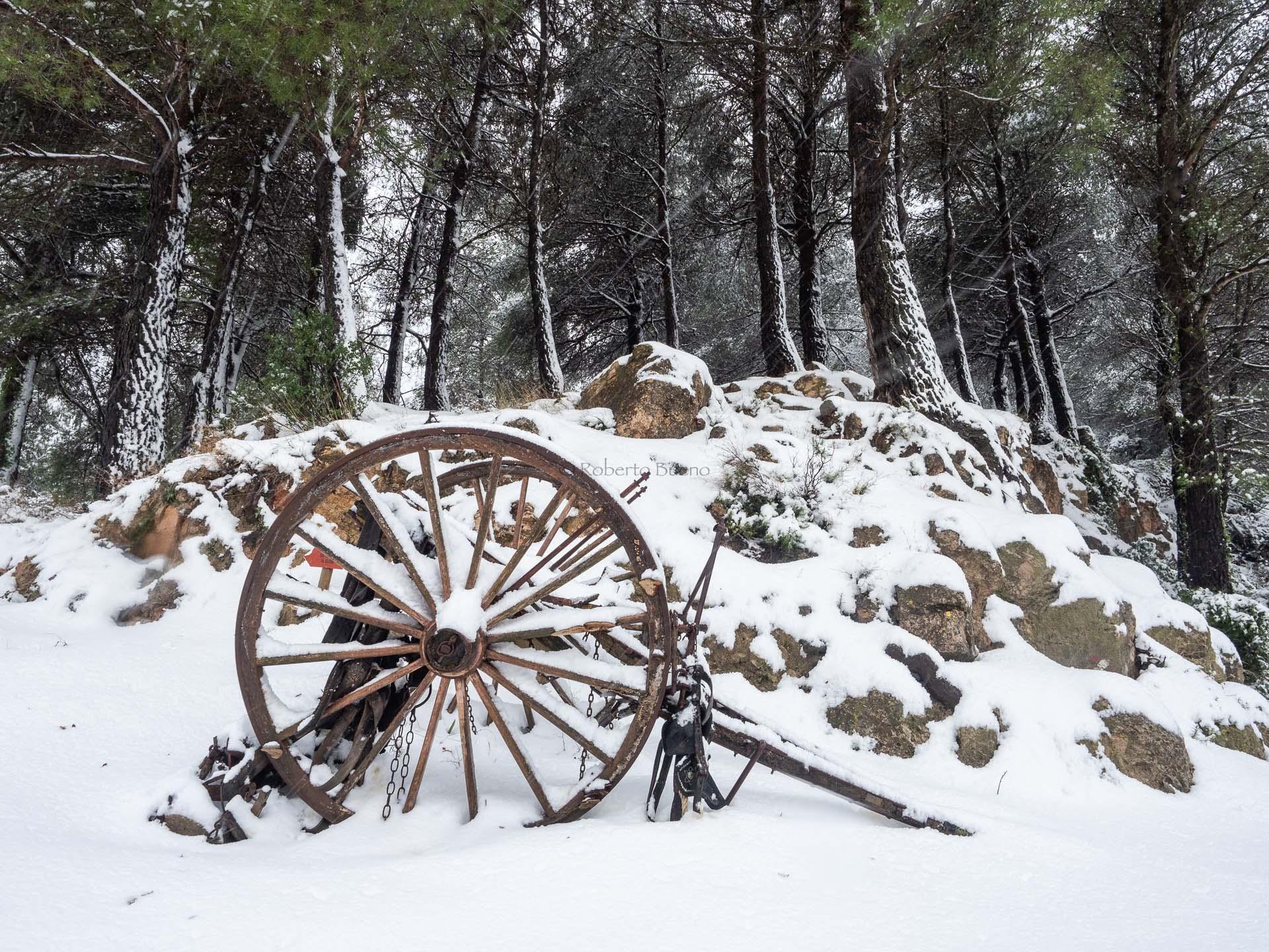 Castelló. Encantos de la nieve - L´Hospitalet-Vandellòs - L´Hospitalet de l´Infant - Vandellòs; Roberto Bueno; Fotografía