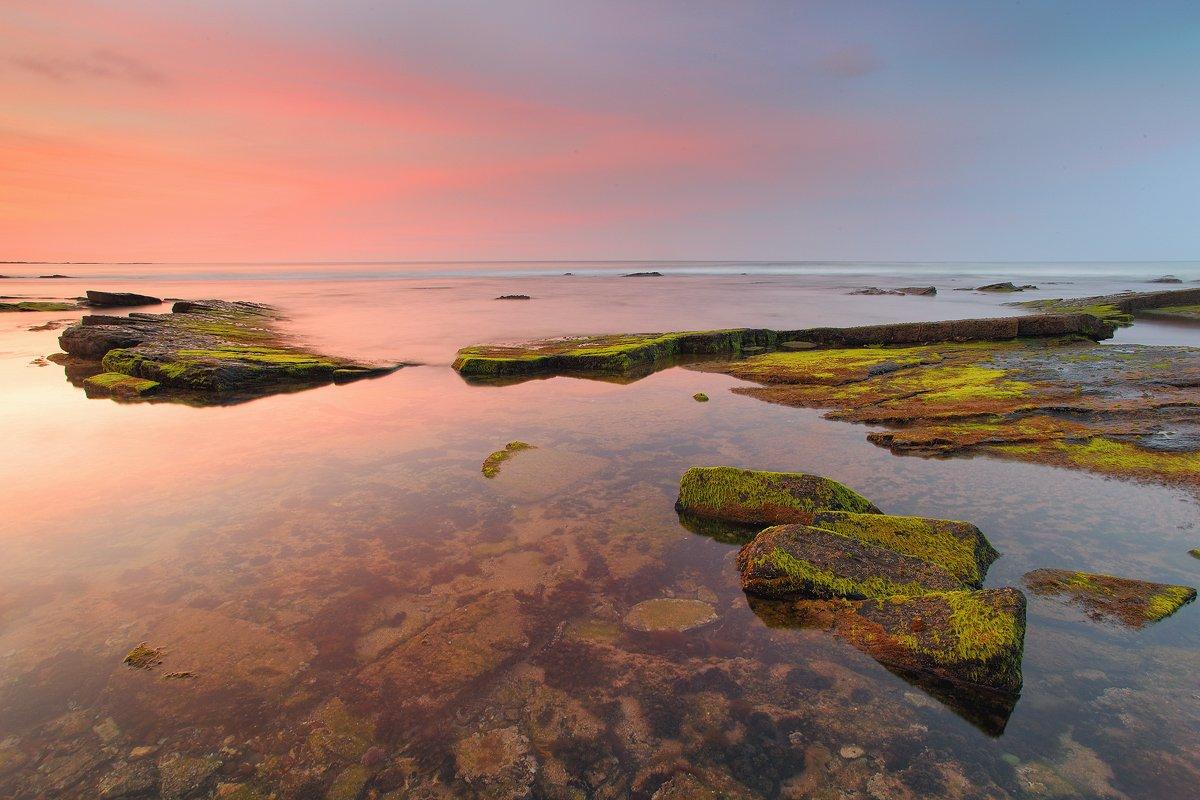 Mares en calma - Javier Alonso Torre Fotografia de naturaleza mares en calma