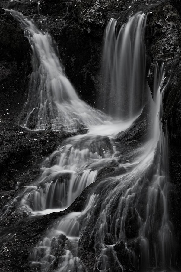 las arterias de Gaia - Javier Alonso Torre Fotografia de naturaleza las venas de Gaia