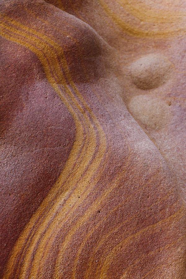 Labetxu - Javier Alonso Torre Fotografía de naturaleza