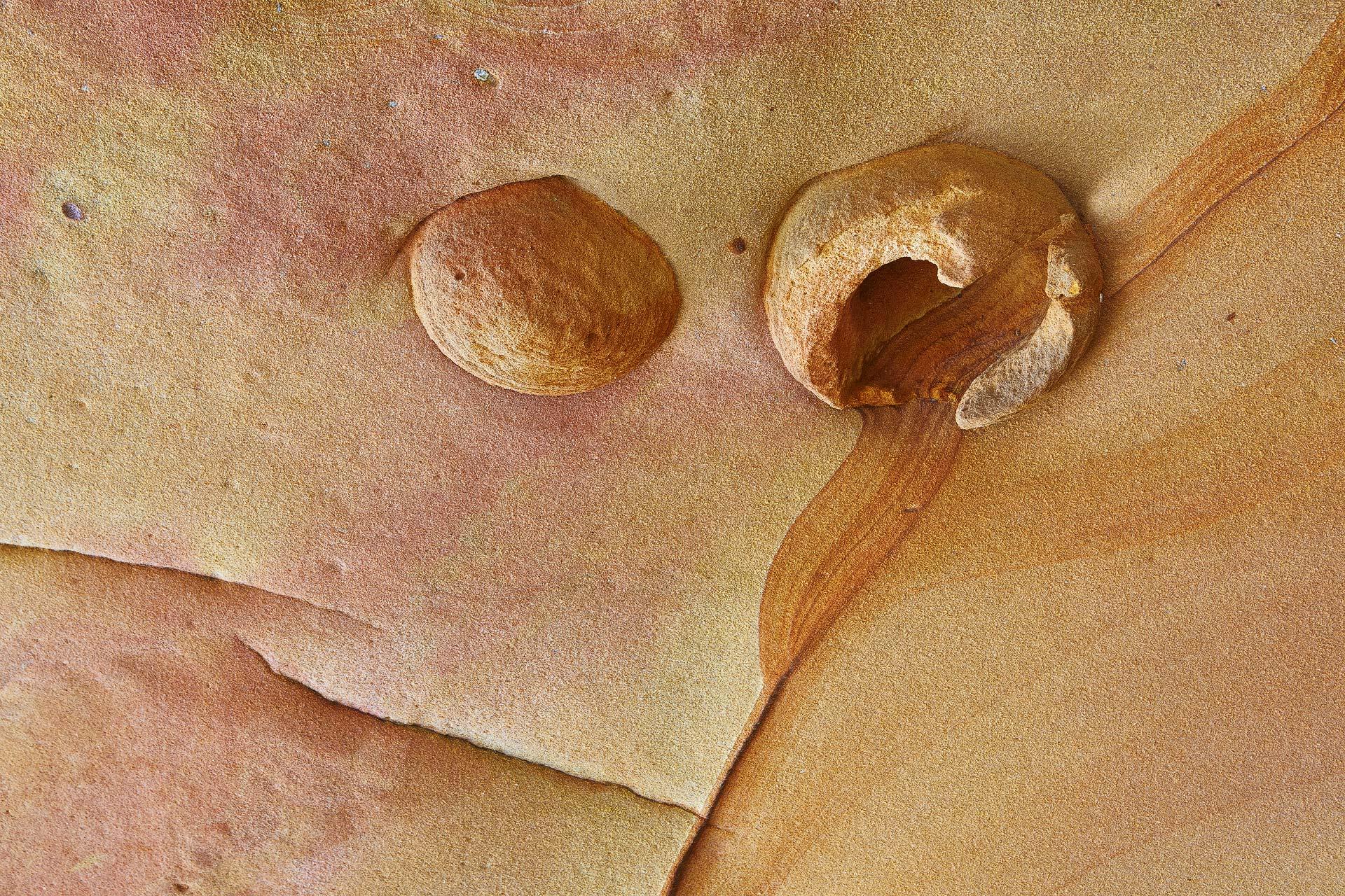 Jaizkibel - Javier Alonso Torre Fotografía de naturaleza